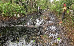 Oil spill in Lot 8 where PetroChina has held a 45% stake since 2003 (Image: ACODECOSPAT)