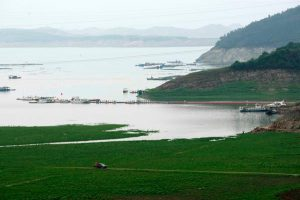 The Danjiangkou reservoir in Hubei province supplies Beijing with water but researchers and the authorities disagree about the extent of pollution problems