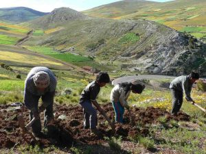 farmers working on small farm in Peru