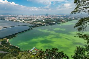 Dianchi lake is one of China's most polluted (Image: Alamy)