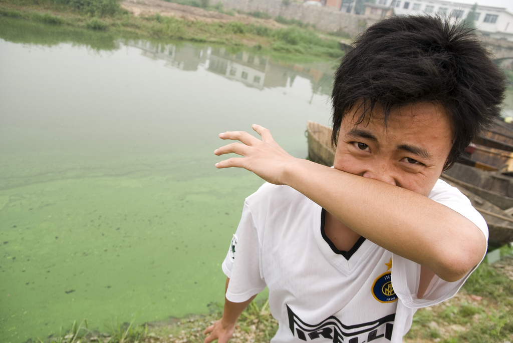 man places hand over his nose due to algae in Chao Lake in southeastern China'sAnhui province