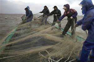 Yangtze River fishing