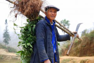 A farmer of theHaniminority, famous for planting rice in terraces inYuanyangcounty, Yunnan. (Image:Takeaway)