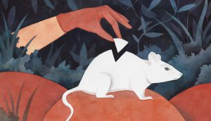 Illustration by Luisa Rivere/Yale E360