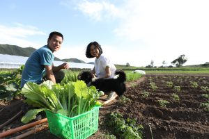 Ren Yingying and her husband Wen Zhiqiang at work (Image: Love Village Farm)