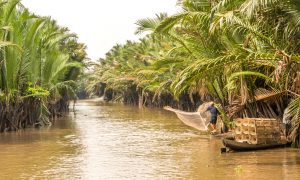 Fishing in the Mekong delta, Vietnam (Image: Alamy)