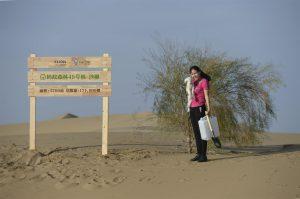 内蒙古库布齐的蚂蚁森林49号沙柳林。图片来源:Alamy