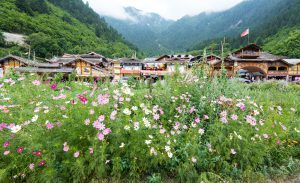 Shuzheng village, Jiuzhaigou, Sichuan (Image: Alamy)