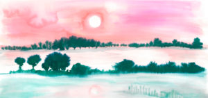 wetlands illustrations, anna