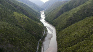 One of China's last remaining habitats for the endangered green peafowl is the Konglong River nature reserve in Yunnan Province, which has been threatened by both mining and infrastructure projects. Local conservation groups have been fighting since 2017 to stop development of a new hydropower station that would flood the area. (Image © Wei Li / Greenpeace)