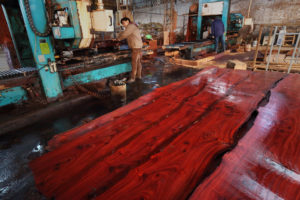 浙江家具厂内,工人正在切割来自非洲来的红木。图片来源 © Lu Guang / Greenpeace