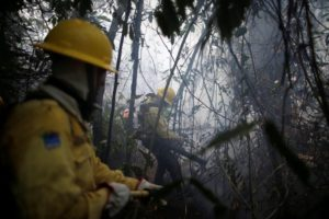 Ibama firefighters tackle blazes in Apui, Brazil's Amazonas state, in August (Image: Alamy)