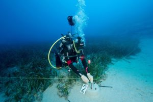 Marine scientists setting up seagrass at a monitoring station in Kas-Kekova Marine Protected Area Antalya Turkey.