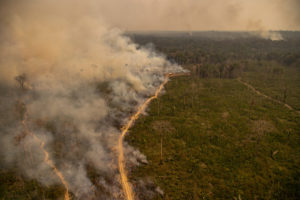 Fire in the Jaci-Paraná Extractive Reserve, in Porto Velho, Rondônia state,