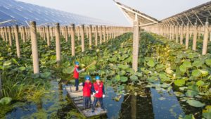 Gaoyou Lake, Tianchang City, Anhui Province solar panels, green finance