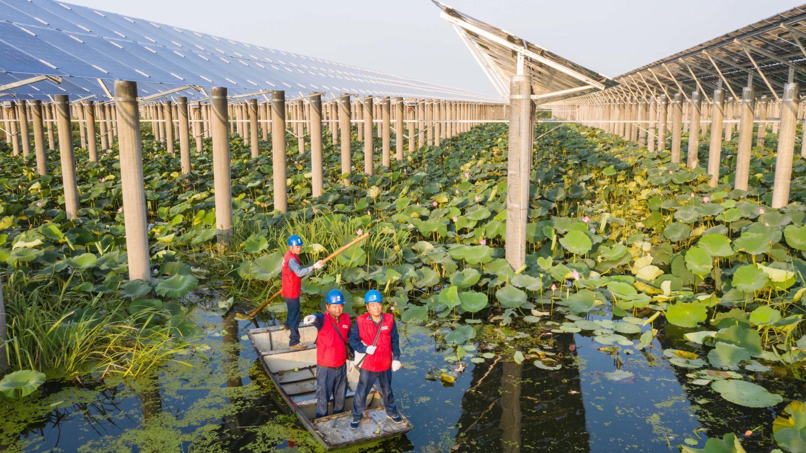 Gaoyou Lake, Tianchang City, Anhui Province solar panels, green finance