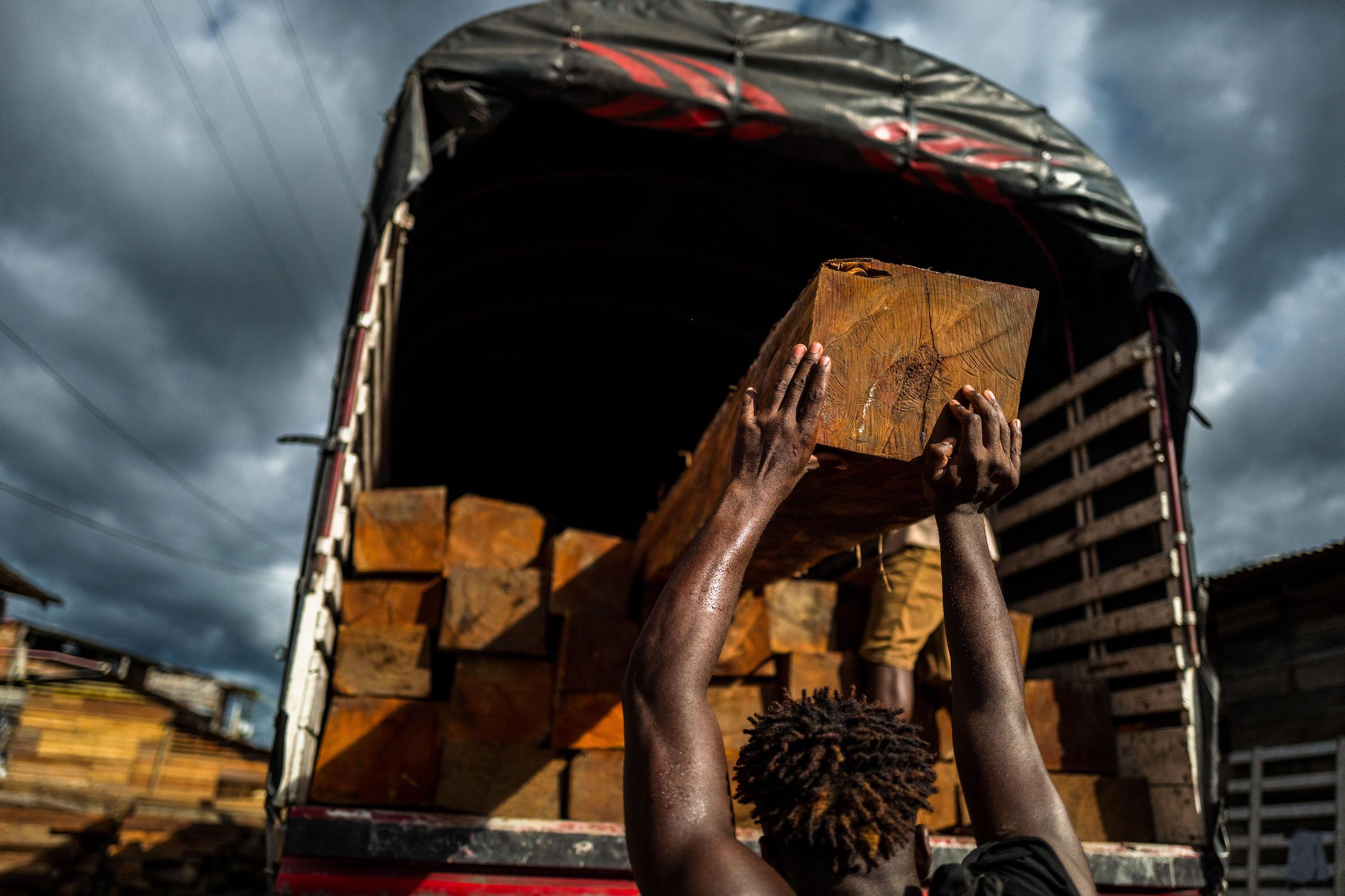 A worker loading timber onto a truck in Colombia (Image: Jan Sochor / Alamy)