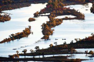 zhenbao island, Heilongjiang province, China
