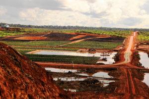 Korindo旗下的种植园公司Papua Agro Lestari在巴布亚省造成的毁林。图片来源:敬畏地球