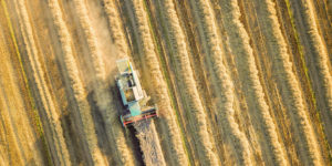 aerial photo of crops in brazil
