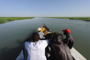 Passengers and steersman sitting on the front side of a pinasse, cruising the Niger Inland Delta. Mali.
