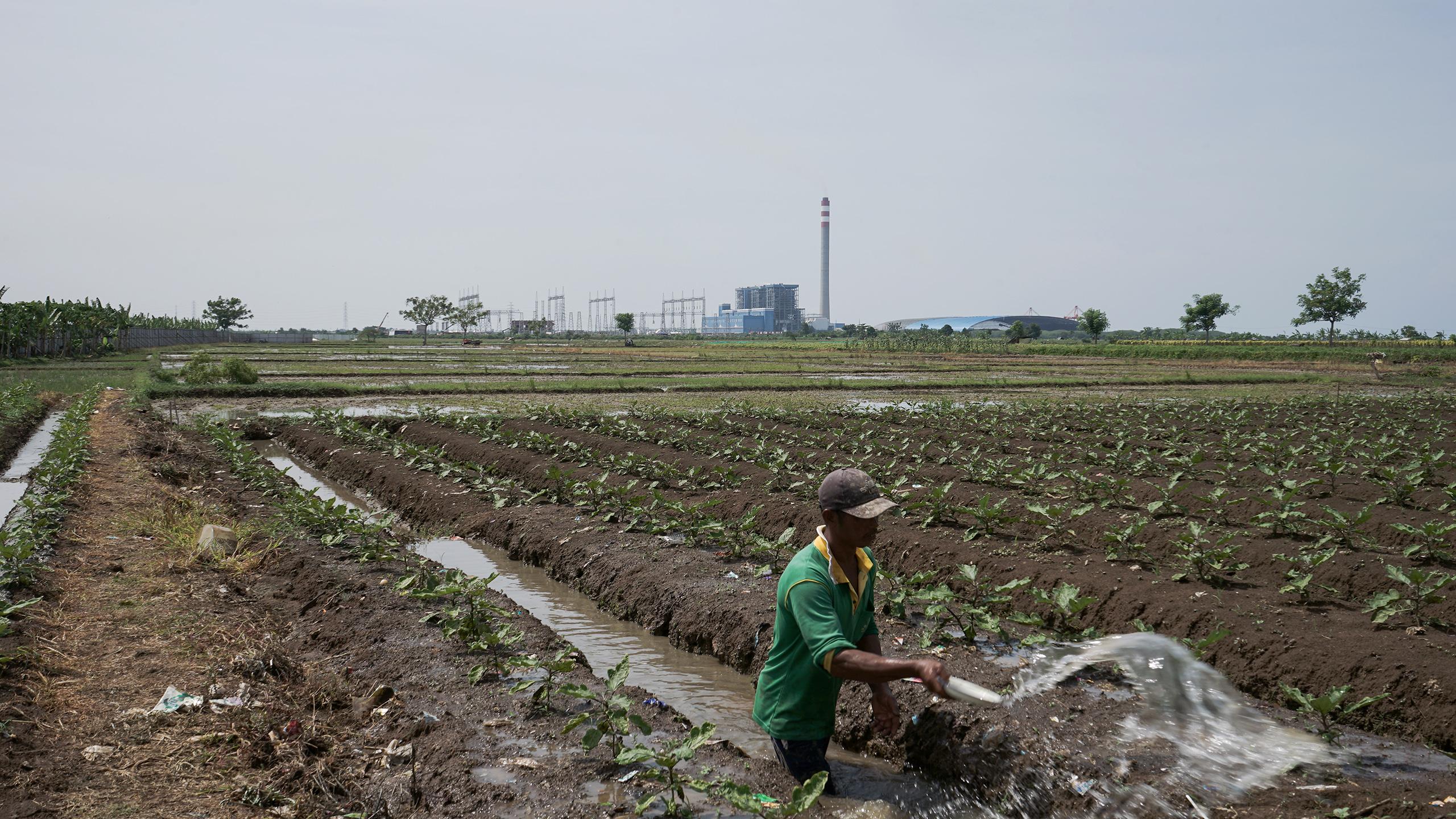 China Dialogue | China environment and climate news