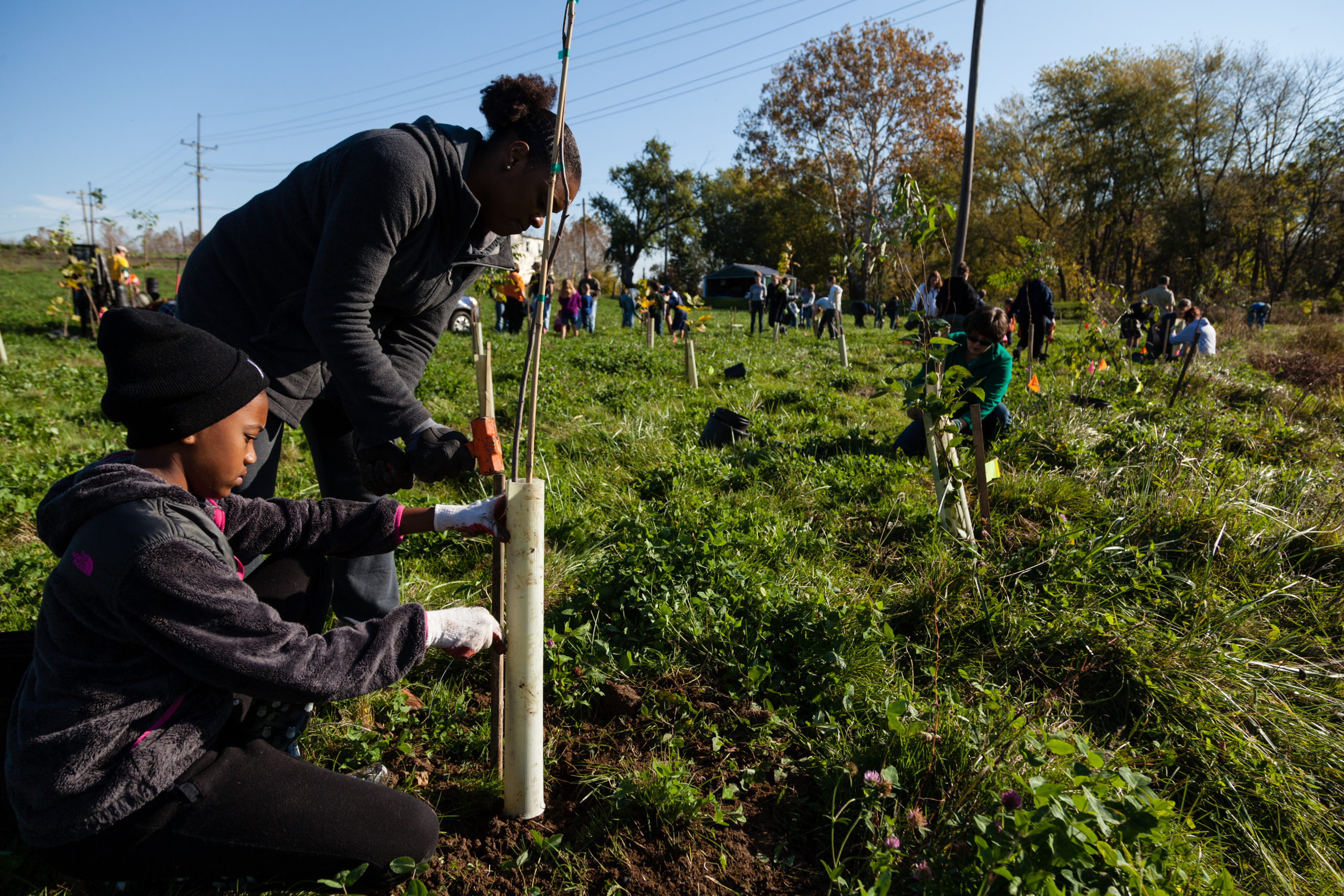 Girl Scouts helping to reforest Fountain Rock Park in Maryland USA