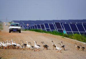solar power in inner mongolia